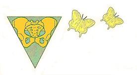 Bekken Advies Centrum Voorschoten logo